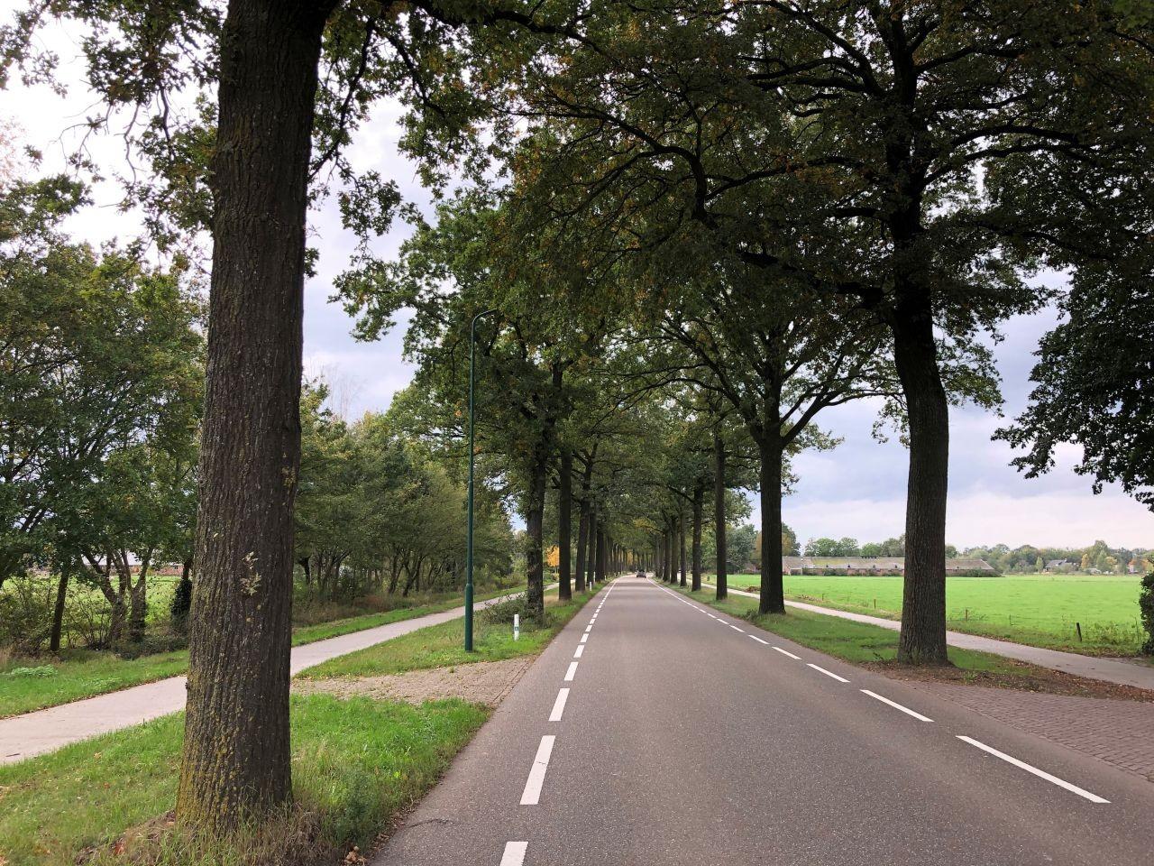 wijwelstraat
